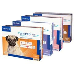 Pipettes antiparasitaires Effipro Duo pour chiens